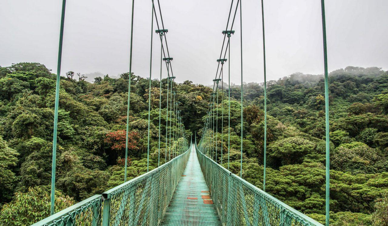 Cestopis Kostarika - Monteverde