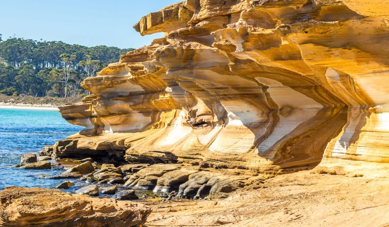 Cestopis Tasmánie - Zvířecí ostrov Maria Island